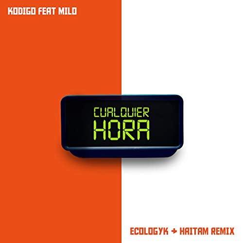 Haitam, Kodigo & Ecologyk feat. Milo