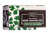 Organic Herb Garden Starter Kit - Indoor Herb Garden Growing Kit with...