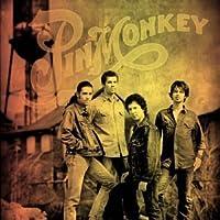 Pinmonkey