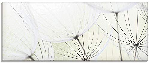 Artland Glasbilder Wandbild Glas Bild einteilig 125x50 cm Querformat Natur Blumen Pusteblume Frühling Moderne Kunst Landhaus S9MV