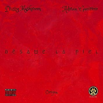Bésame La Piel (feat. Dizzy Mushroom)