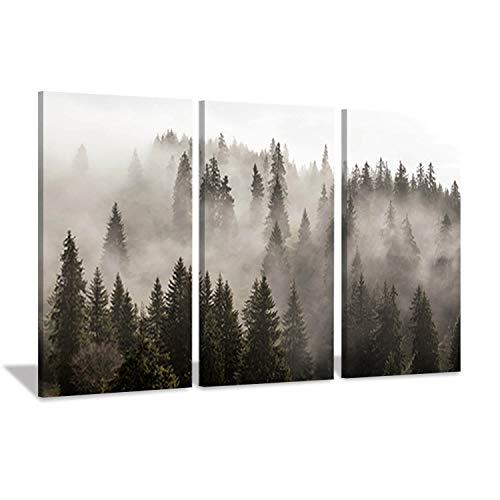 Foggy Forest Wall Art