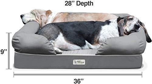 PetFusion large model size