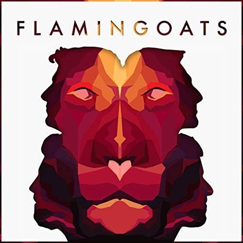 Flamingoats