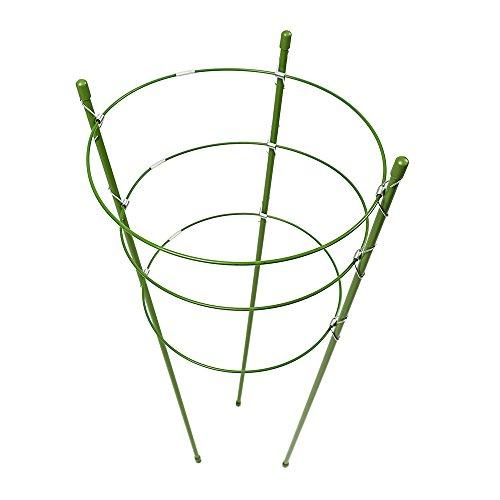 Warooma 2confezione con 3anelli regolabili a gabbia anello di supporto per piante da giardino traliccio pianta in vaso per piante rampicanti Vegtablesflowers, Acciaio, Green, 45 cm