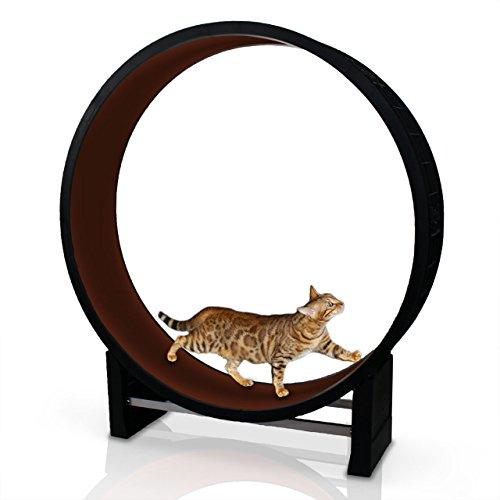 Katzenlaufrad Cat in Motion kastanienbraun - Trainingsgerät für Katze