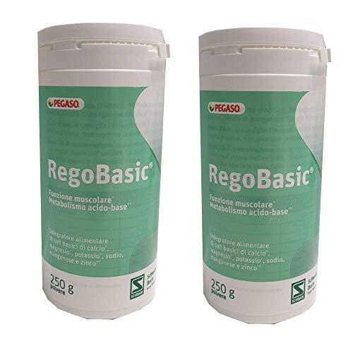 Regobasic Polvere 2 Confezioni da 250 grammi - Pegaso