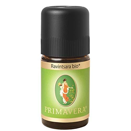 PRIMAVERA Ätherisches Öl Ravintsara bio 5 ml - Aromaöl, Duftöl, Aromatherapie - reinigend, klärend, stärkend - vegan