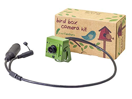 Green Feathers 1080p HD PoE Vogel Box Kamera mit mobilem Zugriff - Power-over-Ethernet, kein Netzteil