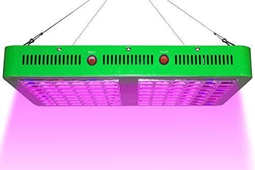 10 | ASIGN LED Grow Light 2000w Full Spectrum for Indoor Planting