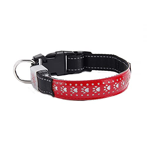 MiOYOOW Collar para perros LED, collar luminoso para perros, recargable por USB, collar de seguridad para mascotas