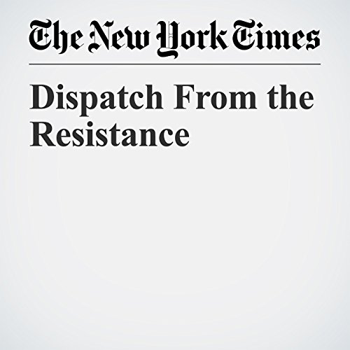 Dispatch From the Resistance copertina