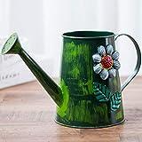 Pequeña regadera Impresión Regadera de la Vendimia, los hogares de riego de Color Hierro regadera, Flor de riego Pulverización Regadera (2L) Regadera para Plantas