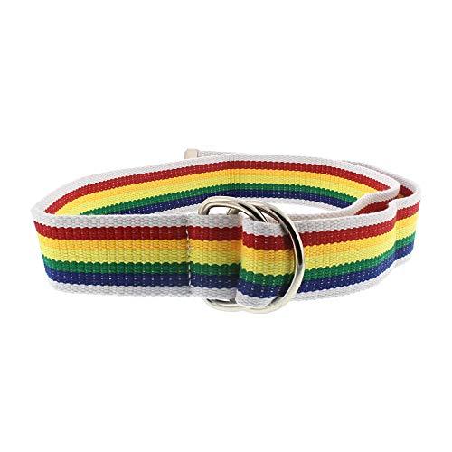 Zac's Alter Ego Rainbow Stripe Canvas Webbing Belt