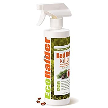natural bed bug killer spray: photo
