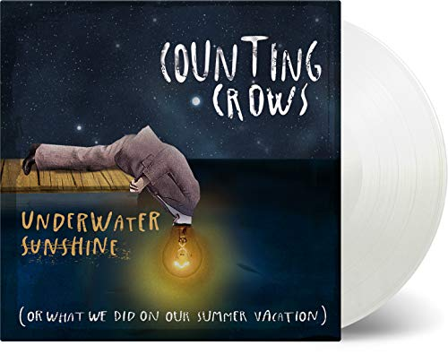 Underwater Sunshine (Or What We Did on Our Summer [Vinyl LP]