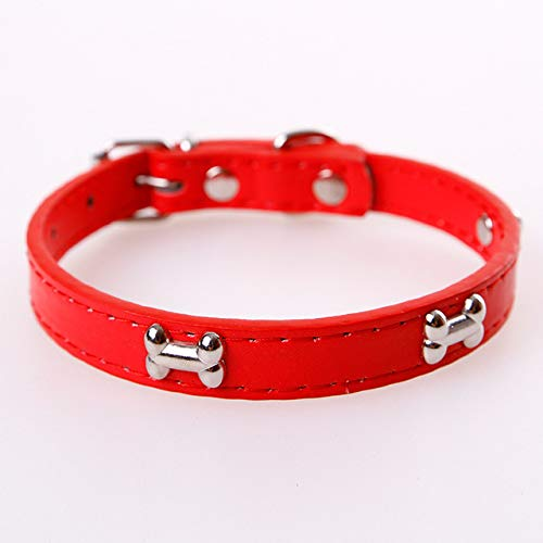 Ltong Bone Leather Duurzame halsband voor huisdieren Dierbenodigdheden Accessoires Halsbandkraag voor hond Puppy Pug-halsbanden voor kleine grote honden, rood, M