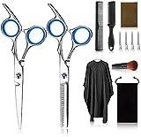 Tijeras de peluquería profesional Kit,12PCS peluquería con tijeras de peine para el cabello, capa, tijeras de corte y adelgazamiento, peine de cuchillas, flequillo de clip, clips, peine de cola