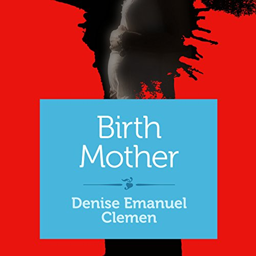 Birth Mother audiobook cover art