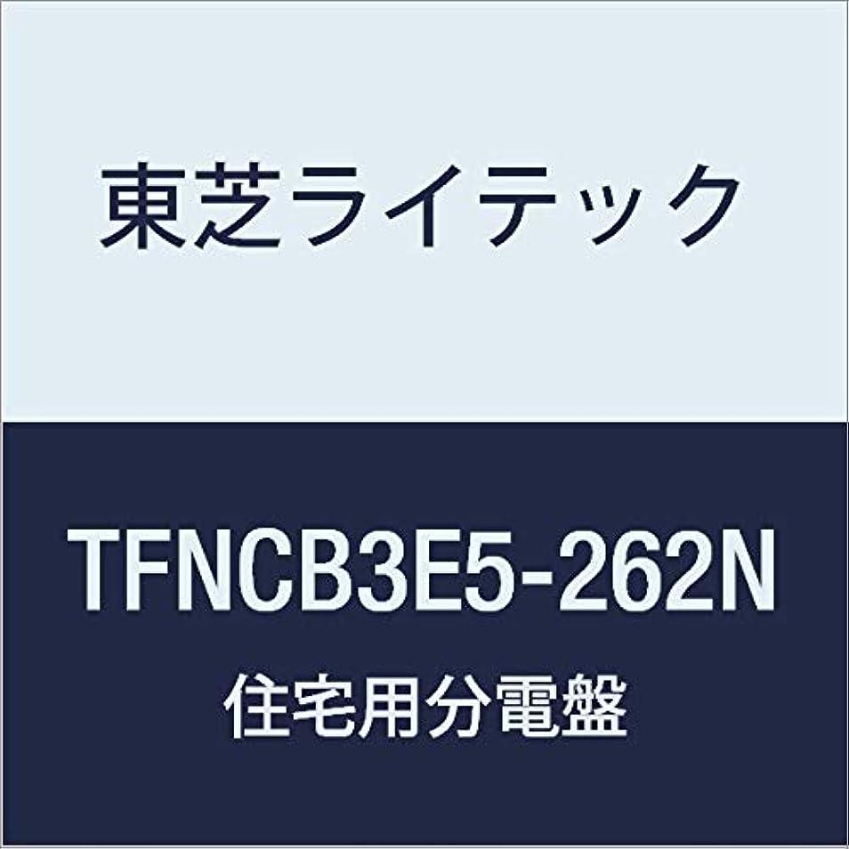 横通信するストレッチ東芝ライテック 小形住宅用分電盤 Nシリーズ 50A 26-2 扉付 付属機器取付スペース付 基本タイプ TFNCB3E5-262N
