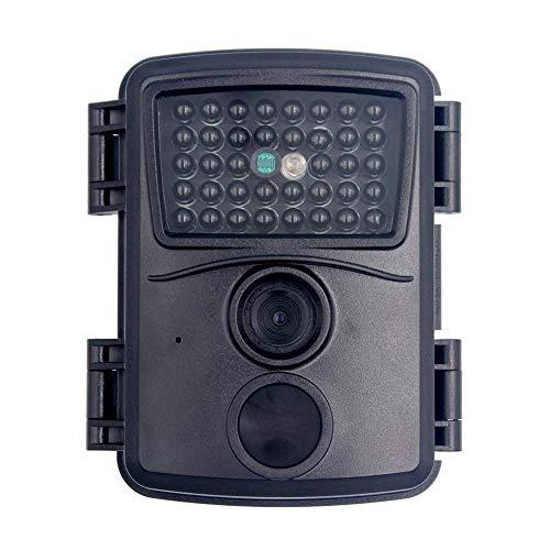 Wildkamera mit Bewegungsmelder Nachtsicht 12MP 1080P 110° Weitwinkel Vision IP54 Wasserdicht für Jagd und Sicherheit zu Hause