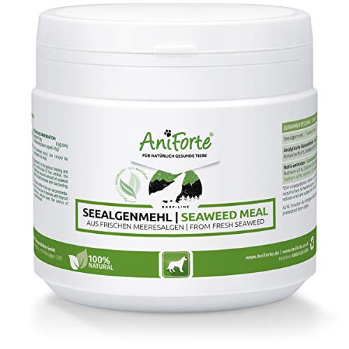 AniForte Seaweed for Dogs Powder 250g - Natural Supplement for Cleaning Teeth, Fresher Breath, Prevents Gum Disease, Boosts Weight Loss & Metabolism