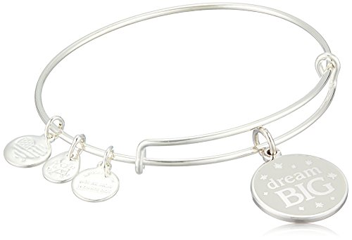 Alex and Ani Words are Powerful, Dream Big EWB Bangle Bracelet