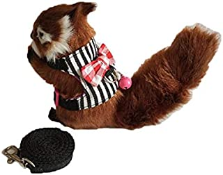 Stock Show Small Animal Outdoor Walking Vest Harness and Leash Set with Cute Bowknot and Clear Bell Decor Chest Strap Harness for Bunny Ferret Guinea Pig Hamster Kitten Clothes Accessory