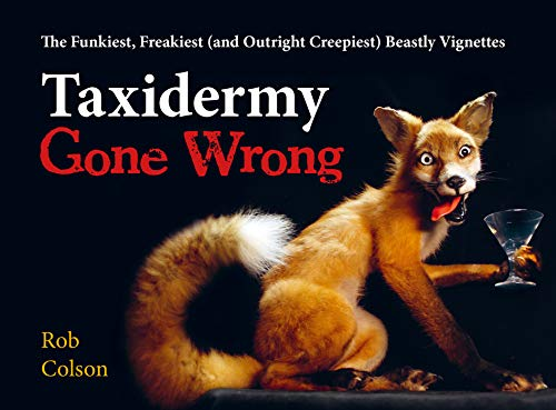 Taxidermy Gone Wrong: The Funniest, Freakiest (and Outright Creepiest) Beastly Vignettes