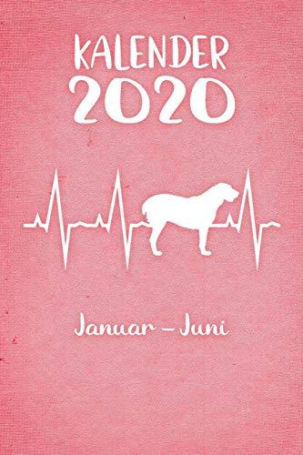 Kalender 2020: Rosa Tageskalender Alabai Herzschlag Hunde 1. Halbjahr Januar Juni ca...