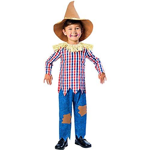 amscan 9901699 - Disfraz de espantapájaros con camiseta, sombrero y pantalón para niño de 3 a 4 años, 1 unidad, multicolor