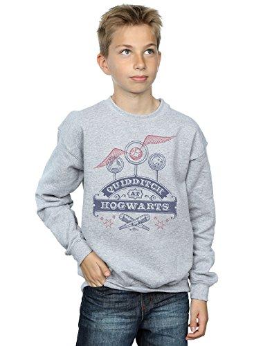 Harry Potter Jungen Quidditch at Hogwarts Sweatshirt 12-13 Years Sport Grey