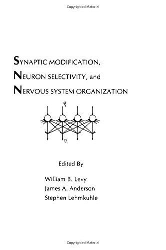 Synaptic Modification, Neuron Selectivity, and Nervous System Organization