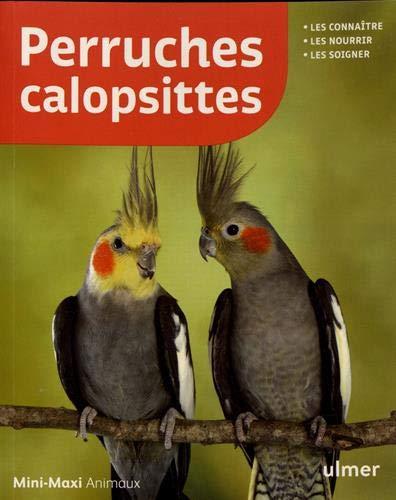 Perruches calopsittes (Mini-maxi)