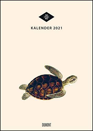 Wandkalender »Menagerie« – Historische Tier-Zeichnungen modern interpretiert – Von 30x40 – 29,7 x 42 cm – Mit Spiralbindung
