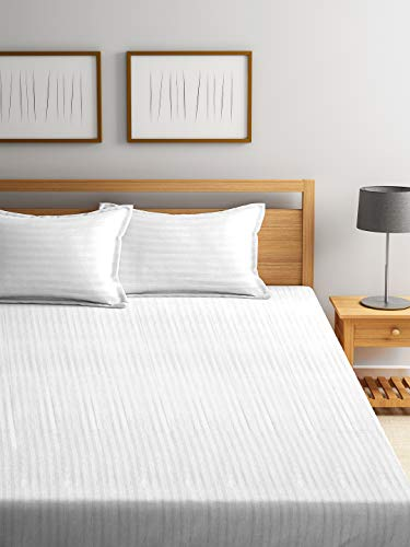 Trident Classic 210TC King Size Solid Cotton Size Bed Sheet with 2 Pillow Covers -White