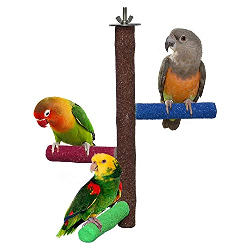 Bird Perch Wooden Stand Parrot Training Stand, Wooden Bird Toy Bird Stand Stick Bird Supplies Utensils Parrot Toy