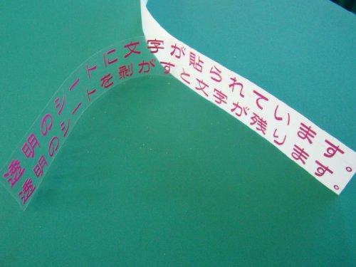 『カッティングシートでできる 『表札』 英字 数字 50ミリ角まで 文字数×110円 全22色』の5枚目の画像