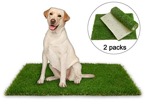 Homemade Dog Potty Pads