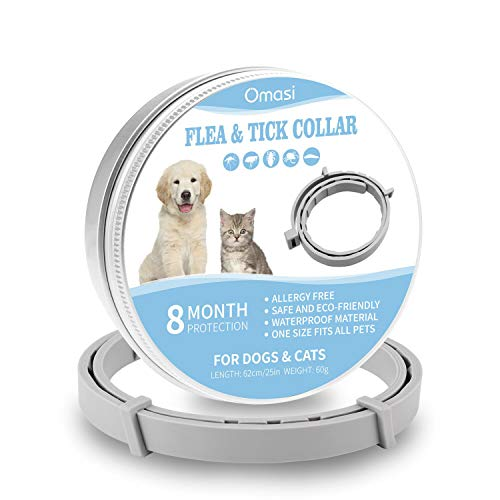 Omasi Collare Antipulci Cane, Impermeabile Trattamento delle pulci Naturale per Cani, 8 Mesi di Protezione per Contro Parassiti e Insetti Protezione Stagione Completa