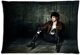 16x24 inch 40x60 cm cushion pillow cover cases Cotton and Polyester sumptuous BACTERIA RESISTANT Adam Lambert