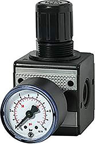 RIEGLER Régulateur de Pression Filetage G 3/8 Plage de réglage Bar 0,5-10
