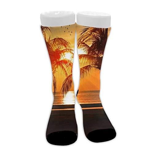 shenguang Tropical Sunset Coconut Palm Tree Unisex Novedad Calcetines de algodón Calcetines de compresión atléticos de media pantorrilla