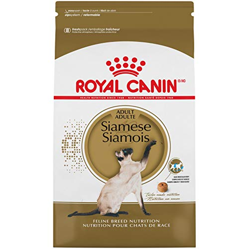 Royal Canin Siamese Breed Adult Dry Cat Food   Chewy