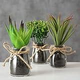 Spetebo Deko Kunstpflanze mit Tragetasche klein – 3er Set – Tisch Deko Pflanze künstlich Kunstblume grün - 2