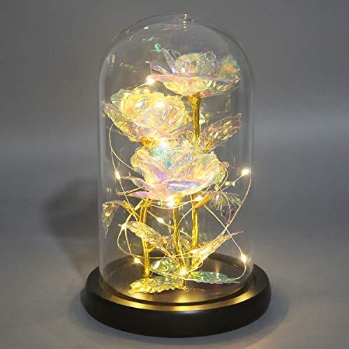 Fasola Rose Eternelle sous Cloche LED, Rose Belle et la Bete pour Maman, Petite Amie, Rose en Verre de Cristal pour Femmes en Anniversaire, Saint Valentin, Fête des Mères, Jour de Thanksgiving, Noël