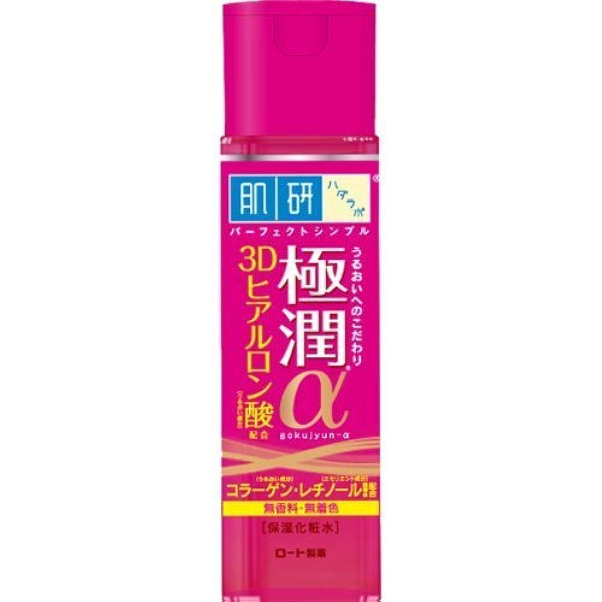 要件動脈パテ肌研(ハダラボ) 極潤α化粧水 170mL