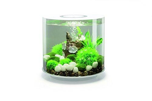 OASE biOrb TUBE 15 LED Aquarium, 15 Liter - Aquarien Komplett-Set mit LED Beleuchtung und patentiertem Filter-System, Acryl-Becken in Weiß