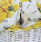 Academy Té Cuadrado de la Pared del Comedor de la Cocina   café Reloj Fruta (Cachorro), Multicolor, Talla única