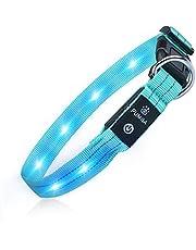 LED Hundhalsband Vattentät Upplyst Hundhalsband USB Uppladdningsbar Säkerhet Blinkande Hundhalsband Justerbar Superljus för Mörkret ökad Synlighet